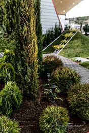 Mockler Garten Und Landschaftsbau Gmbh